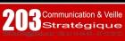 203 Communication et Veille Stratégique